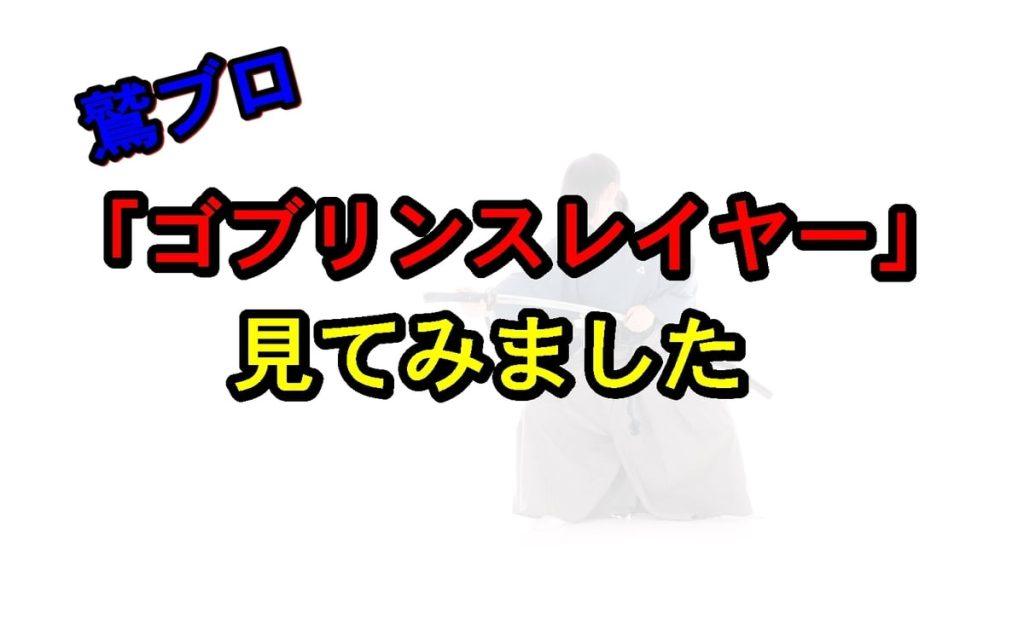 20190527141349 - アニメとかあんまり見ないオッサンが「ゴブリンスレイヤー」を見た結果…(ネタバレなし)