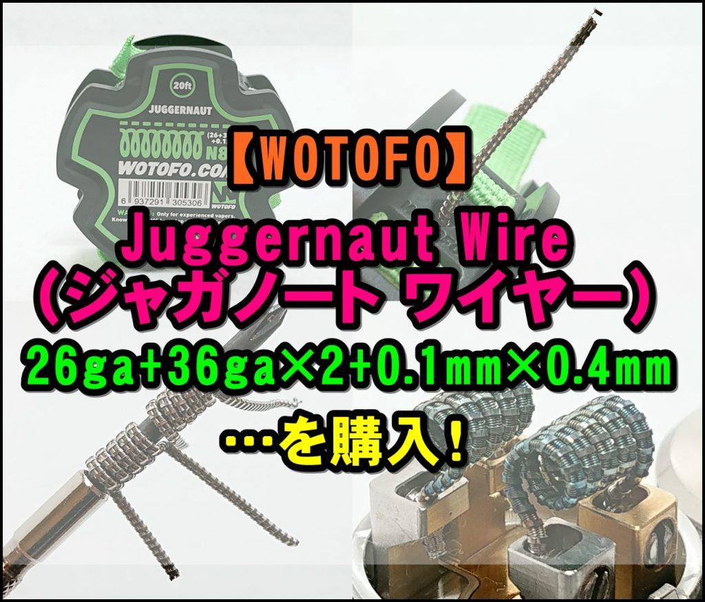 cats 1 - 【WOTOFO】ジャガノートワイヤーを購入!NI80(26ga+36ga)×2+0.1mm×0.4mm
