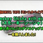 DSC 0014 2 150x150 - MONSTA VAPE (モンスタベイプ)のリキッドまとめ!~13種中12種を制覇!ミステリーベリーはマジでミステリー!~