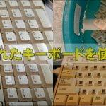 cats 11 150x150 - 15年くらい前に買ったキーボードをメイン使用にした話。